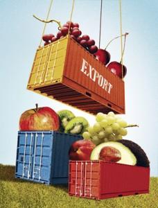 dolar-exportaciones-